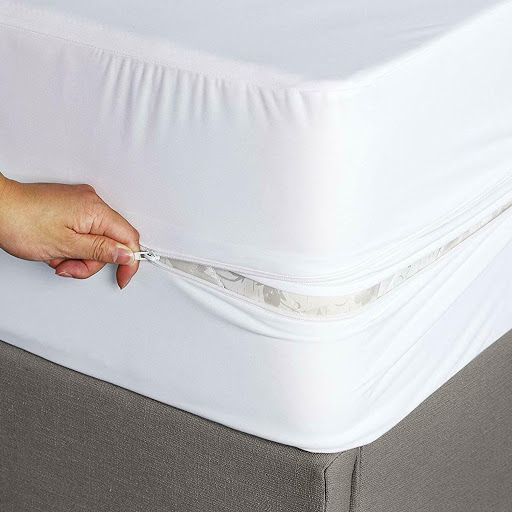 Dust mite & bed bug mattress encasement
